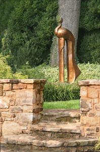 Peacock-in-garden