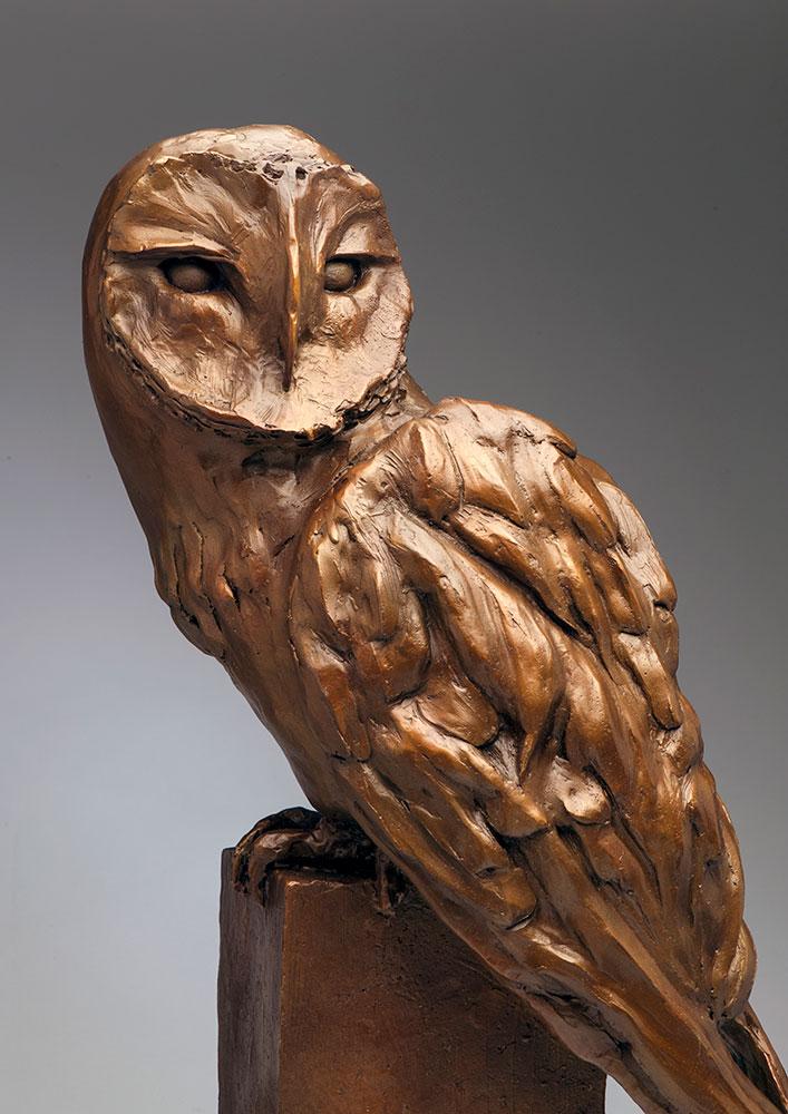 barn-owl-4