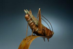 grasshopper-4