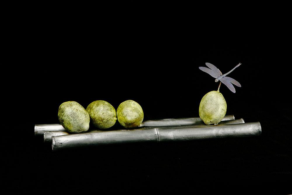 lemon-bamboo-dragonfly-1