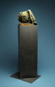 macaw-1