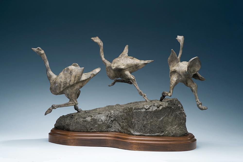 ostriches-2