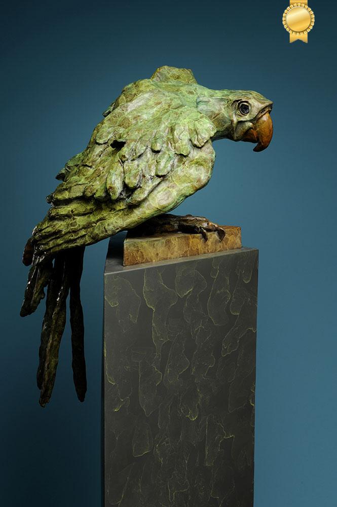 macaw-award